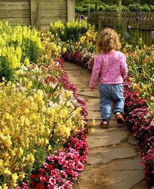 Toddler Walking Garden Path