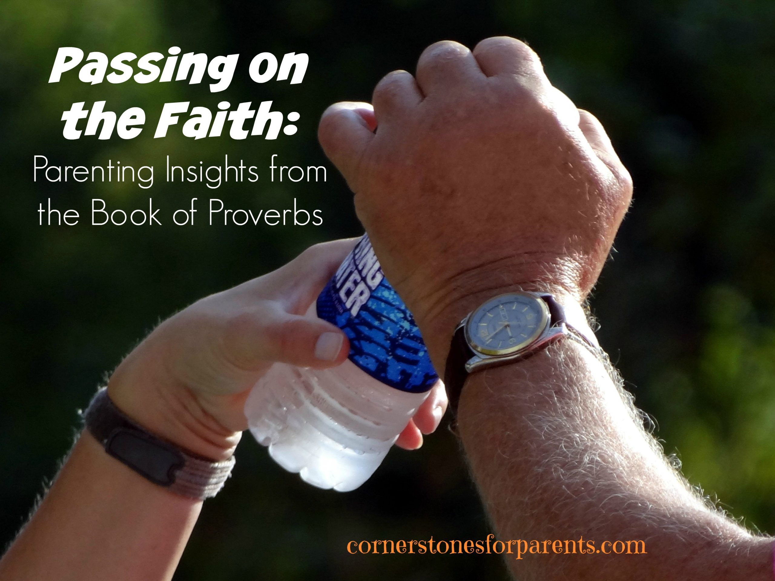 Passing on Your Faith (Proverbs)